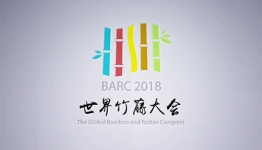 Global Bamboo And Rattan Congress 2018