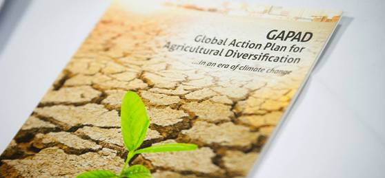 Launch of the Declaration on Agricultural Diversification in Paris, GAPAD